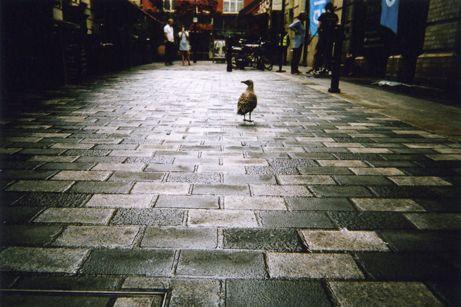 fotografia-senzatetto-calendario-2016-londra-my-london-cafe-art-12