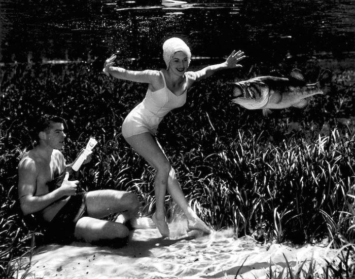 fotografia-subacquea-scene-giocose-bruce-mozert-05
