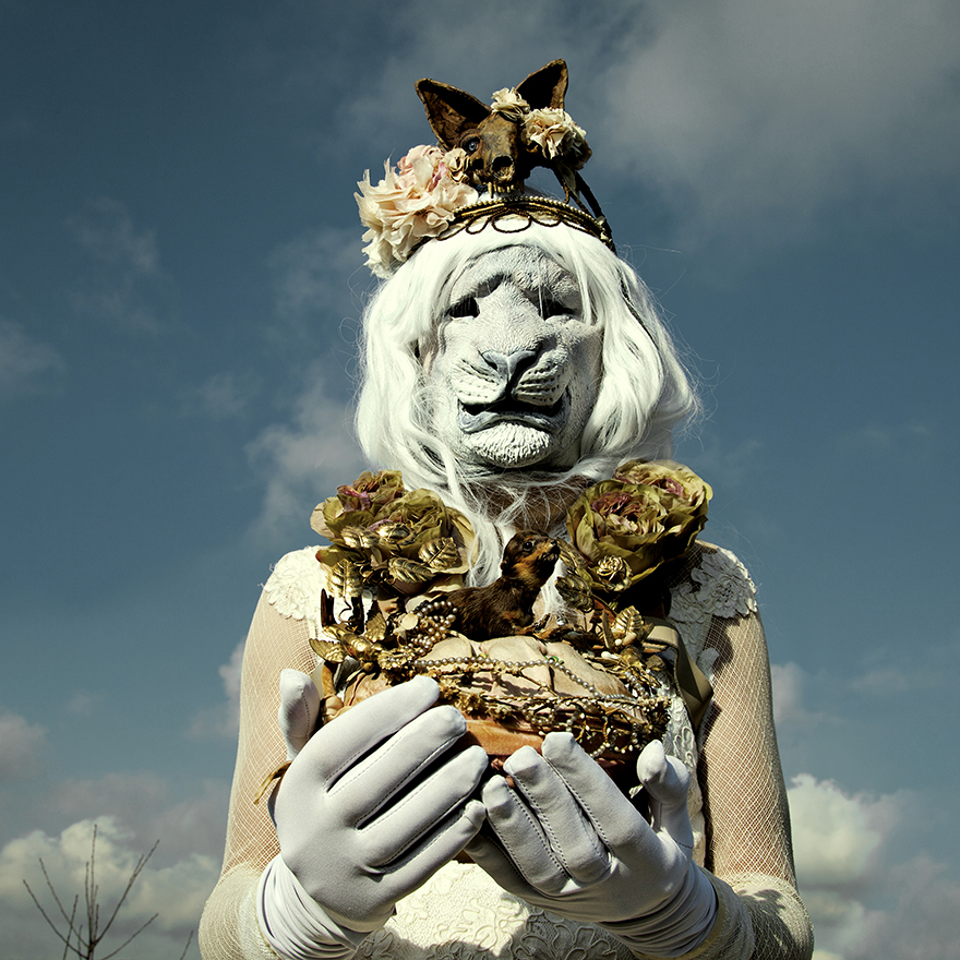 fotografie-surreali-tassidermia-wounderlad-mothmeister-07