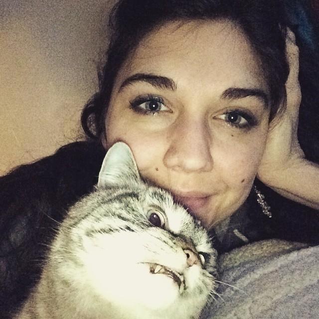 gatto-vampiro-espressione-cattiva-loki-10