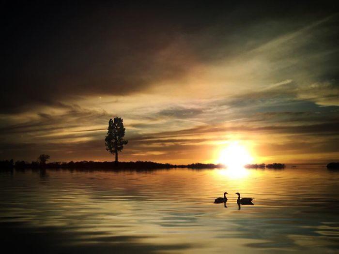 immagini-fotografia-surreale-iphone-mississippi-melissa-vincent-20