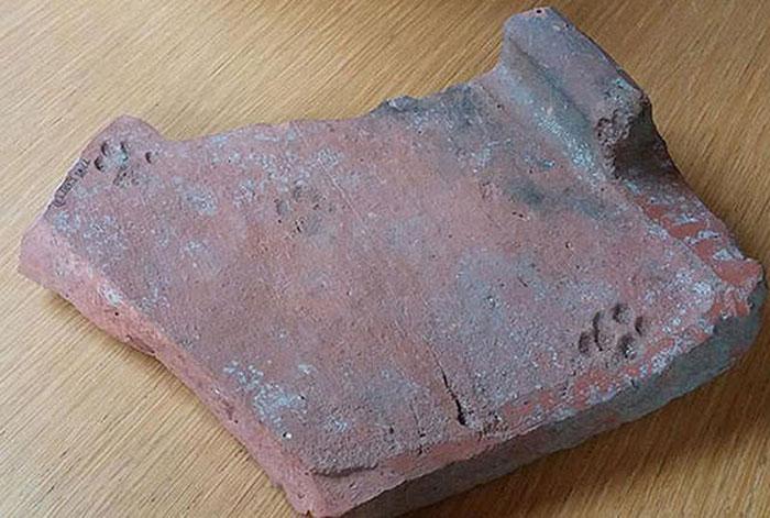 impronte-di-gatto-su-tegole-antica-roma-1