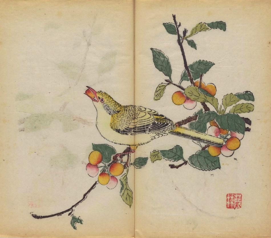 libro-stampato-a-colori-piu-antico-del-mondo-11