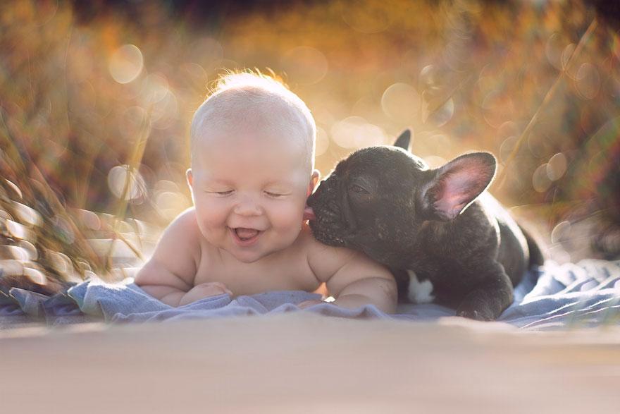 neonato-cucciolo-bullgog-amicizia-ivette-ivens-01