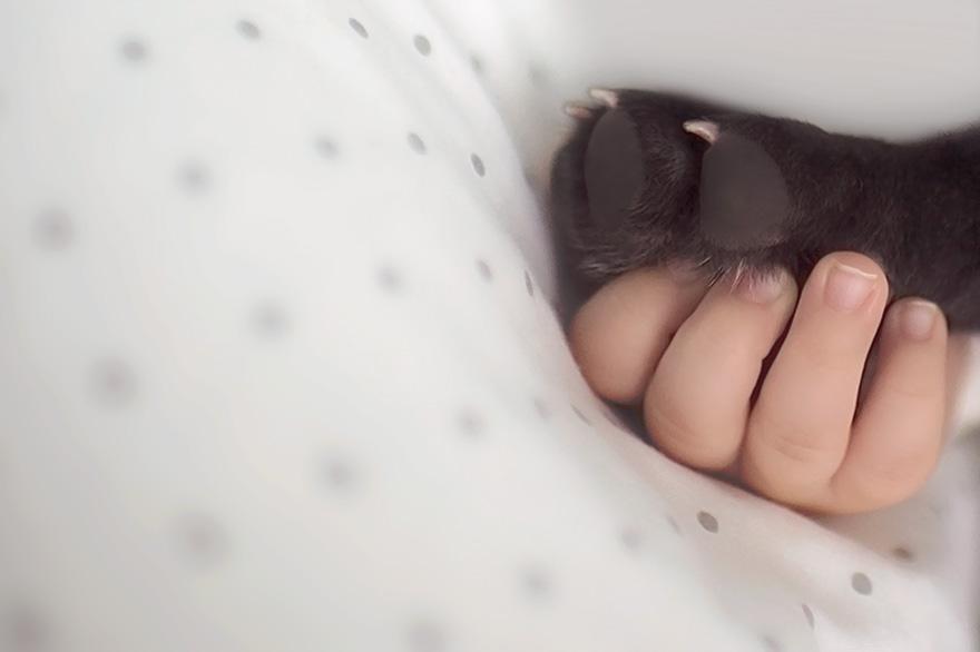 neonato-cucciolo-bullgog-amicizia-ivette-ivens-03