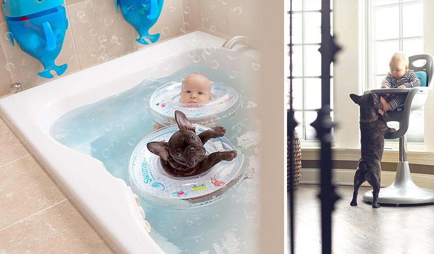 neonato-cucciolo-bullgog-amicizia-ivette-ivens-04