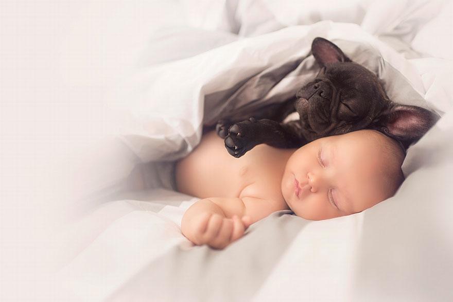 neonato-cucciolo-bullgog-amicizia-ivette-ivens-05