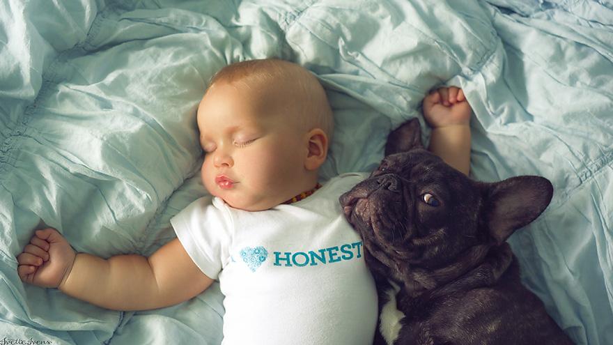 neonato-cucciolo-bullgog-amicizia-ivette-ivens-09