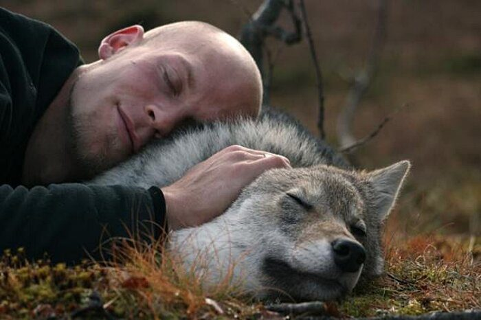 parco-norvegia-visitatori-giocano-con-lupi-polar-park-209
