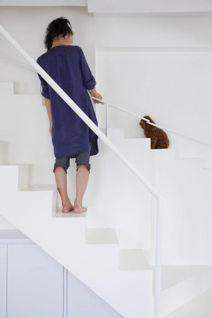 scala-per-piccoli-animali-domestici-casa-moderna-07BEACH-2