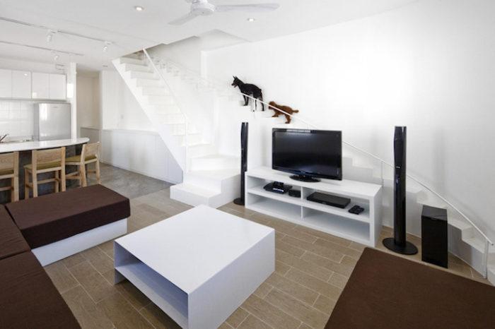 scala-per-piccoli-animali-domestici-casa-moderna-07BEACH-5