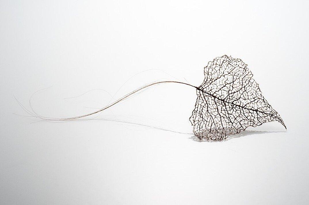 sculture-foglie-secche-capelli-umani-arte-jenine-shereos-01