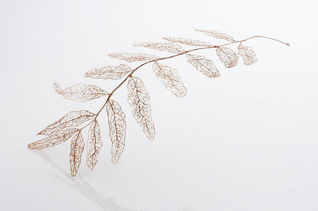 sculture-foglie-secche-capelli-umani-arte-jenine-shereos-02