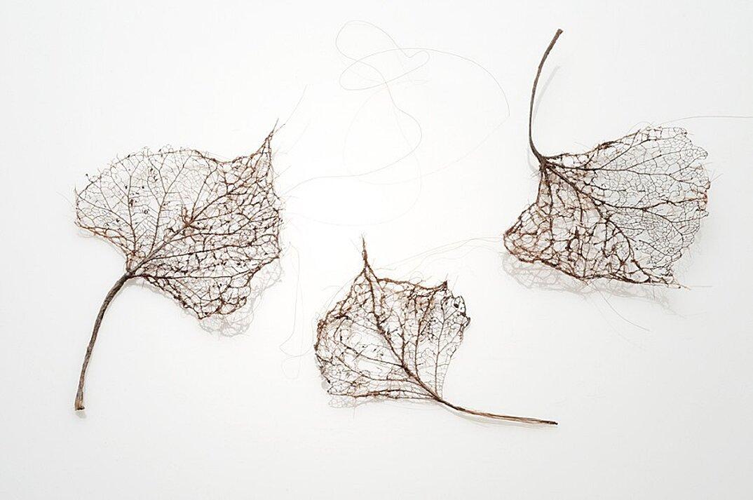 sculture-foglie-secche-capelli-umani-arte-jenine-shereos-04