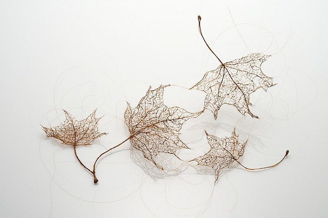 sculture-foglie-secche-capelli-umani-arte-jenine-shereos-08
