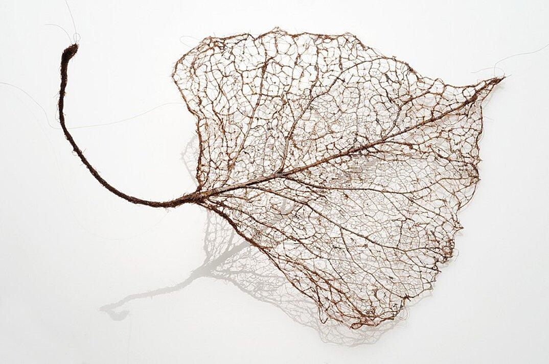 sculture-foglie-secche-capelli-umani-arte-jenine-shereos-09
