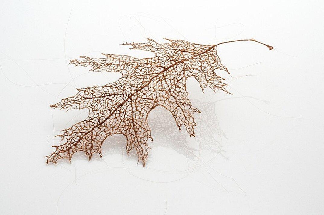 sculture-foglie-secche-capelli-umani-arte-jenine-shereos-10