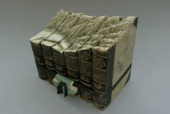 sculture-vecchi-libri-incisi-paesaggi-montagne-guy-laramee-12