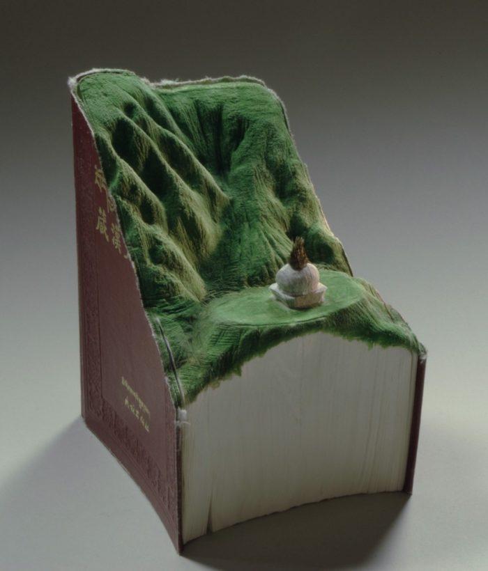sculture-vecchi-libri-incisi-paesaggi-montagne-guy-laramee-13