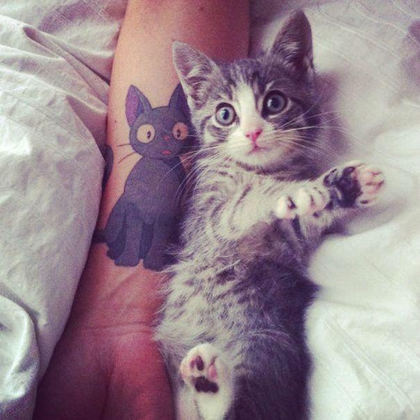 Tatuaggio di gattino