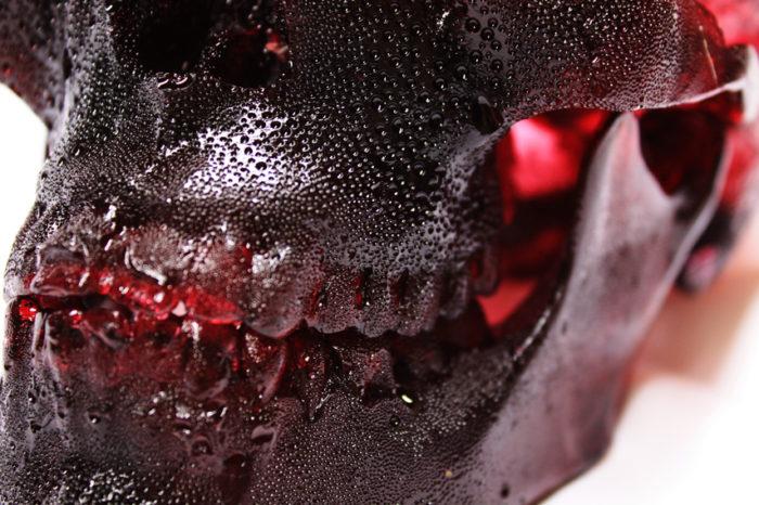 teschio-umano-commestibile-zucchero-joseph-marr-4