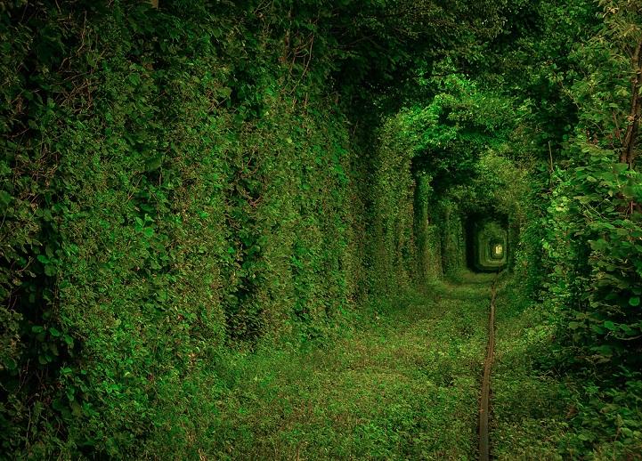 tunnel-dell-amore-klevan-ucraina-kiev-fotografia-1
