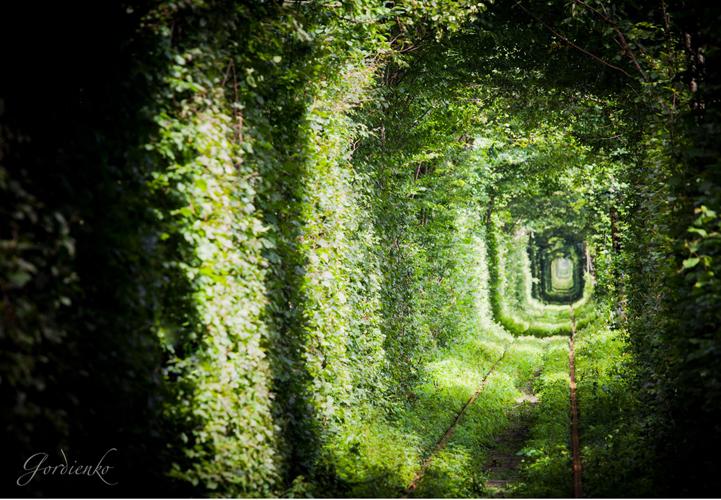 tunnel-dell-amore-klevan-ucraina-kiev-fotografia-2