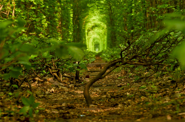 tunnel-dell-amore-klevan-ucraina-kiev-fotografia-4