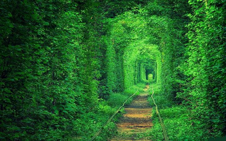 tunnel-dell-amore-klevan-ucraina-kiev-fotografia-6