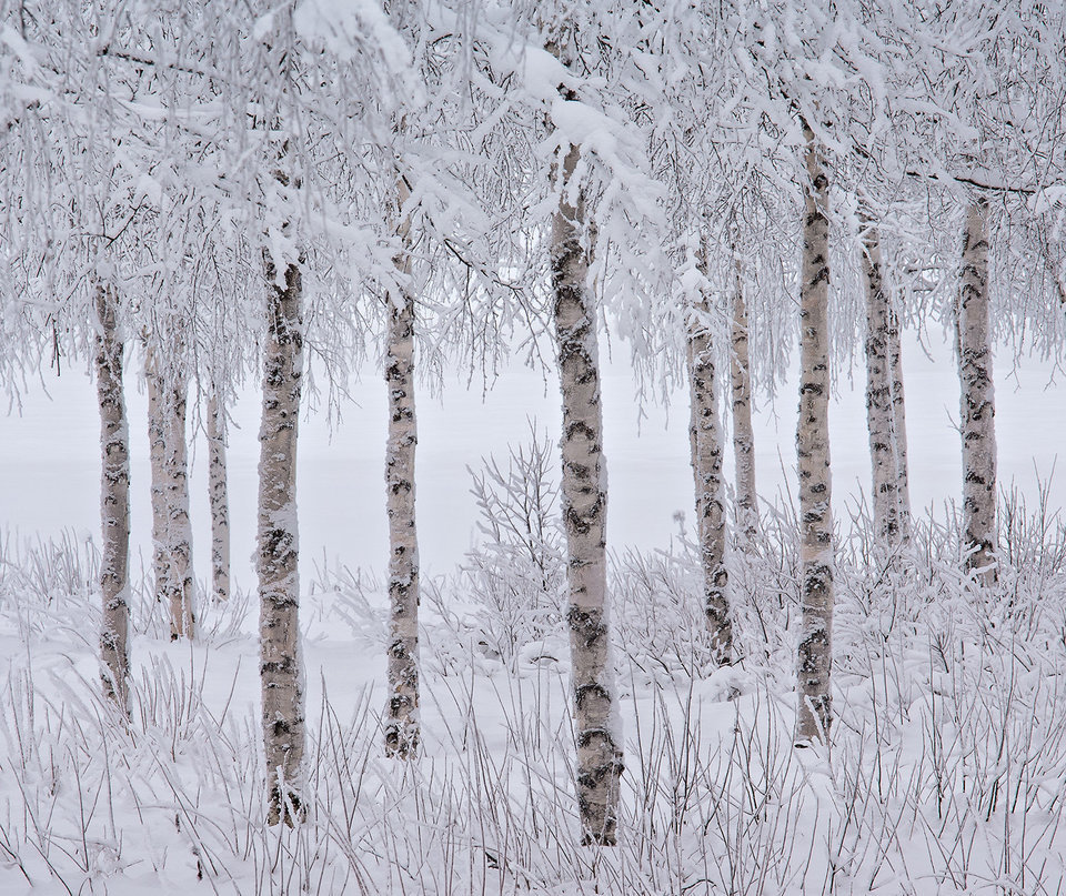 vincitori-2015-international-landscape-photographer-07