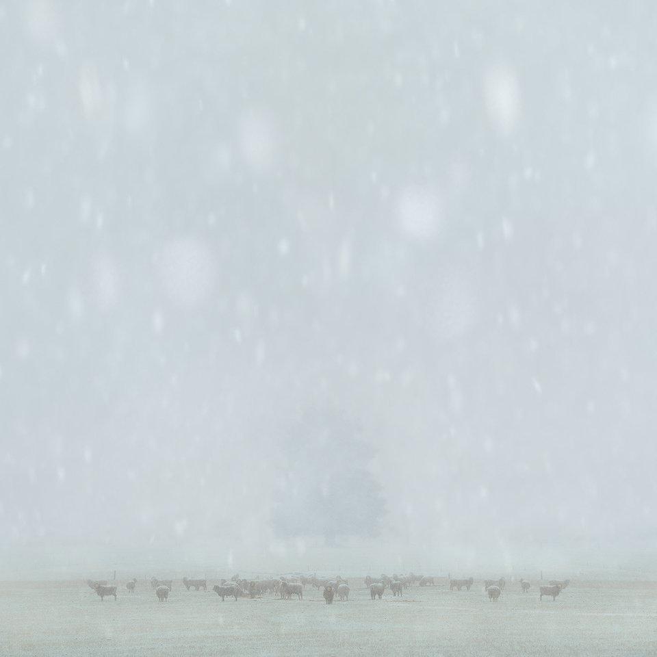 vincitori-2015-international-landscape-photographer-17