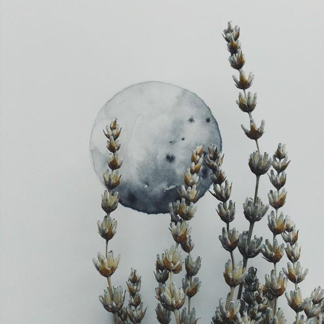 acquerelli-blu-monocromatici-luna-michal-friese-arte-7