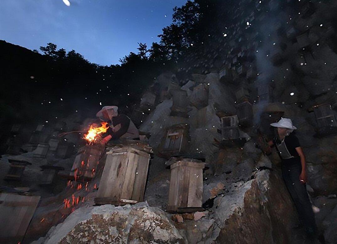 api-asiatiche-estinzione-arnie-montagna-cina-muyu-shennongjia-9-keb