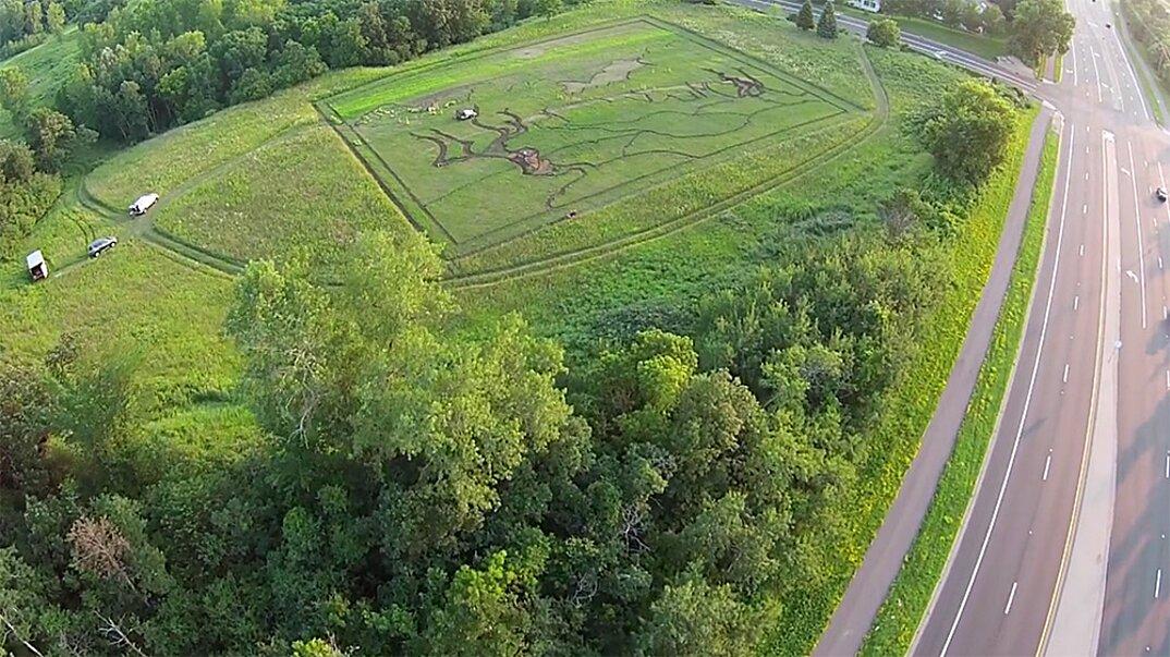 campo-installazione-coltivazione-ulivi-van-gogh-arte-stan-herd-4