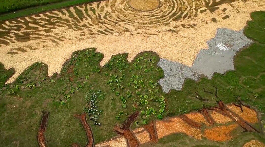 campo-installazione-coltivazione-ulivi-van-gogh-arte-stan-herd-5