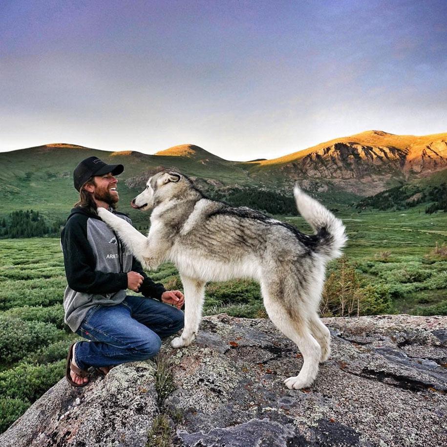 cane-lupo-loki-natura-fotografia-kelly-lund-01