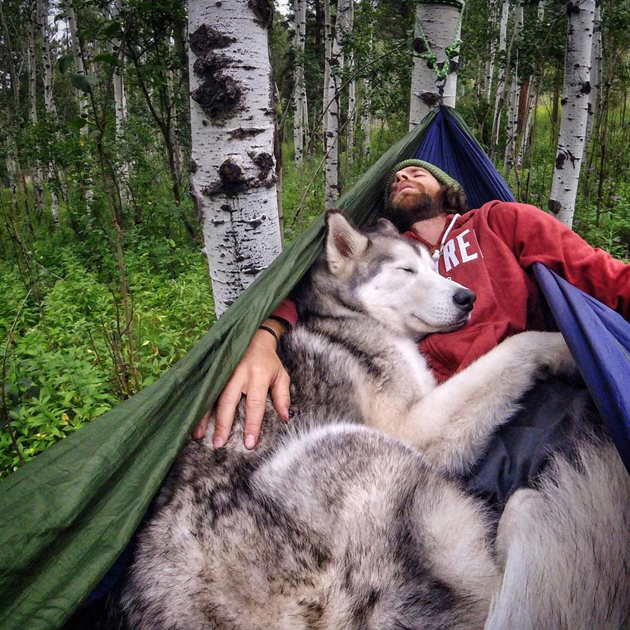 cane-lupo-loki-natura-fotografia-kelly-lund-16