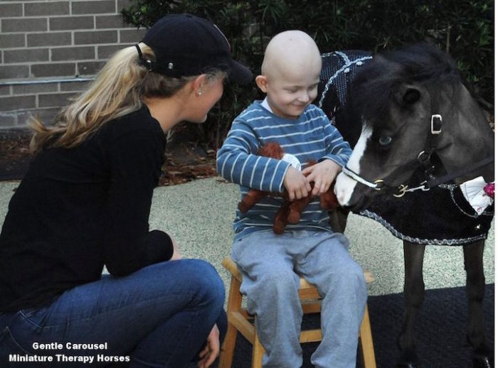 cavelli-nani-animali-terapia-disabili-malati-therapy-horses-7