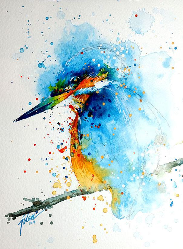 dipinti-acquerelli-animali-colorati-tilen-ti-03