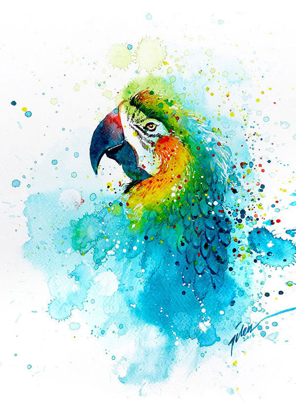 dipinti-acquerelli-animali-colorati-tilen-ti-04