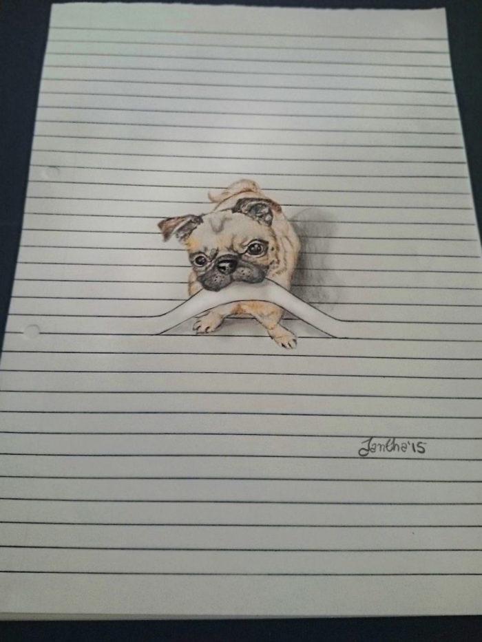 disegni-animali-righe-quaderno-iantha-naicker-4