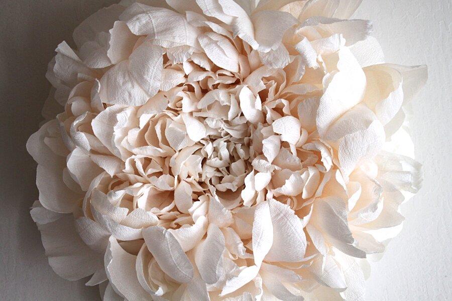 fiori-enormi-carta-crespa-tiffanie-turner-02