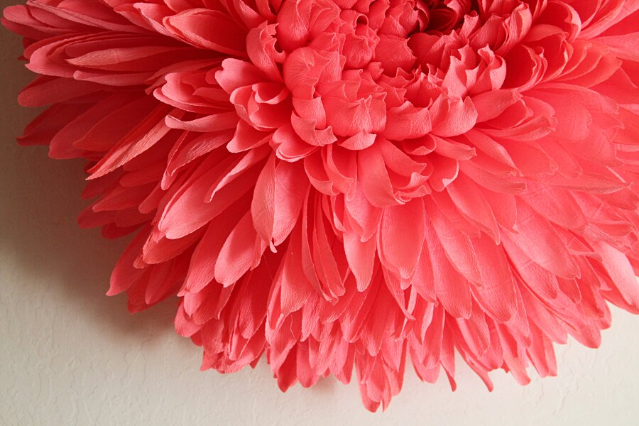 fiori-enormi-carta-crespa-tiffanie-turner-03