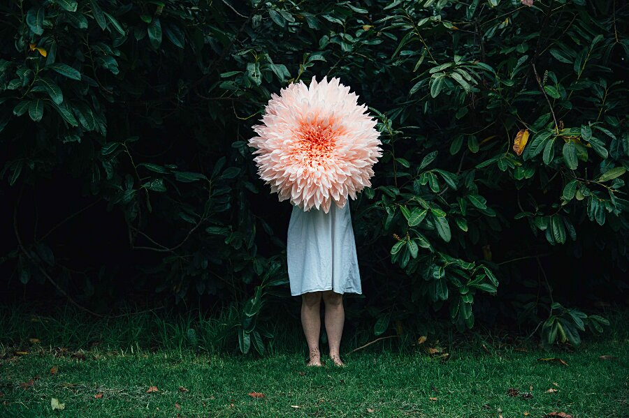 fiori-enormi-carta-crespa-tiffanie-turner-04