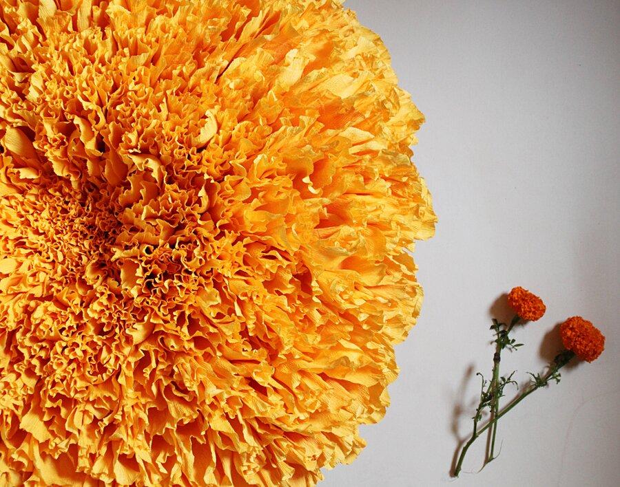 fiori-enormi-carta-crespa-tiffanie-turner-05