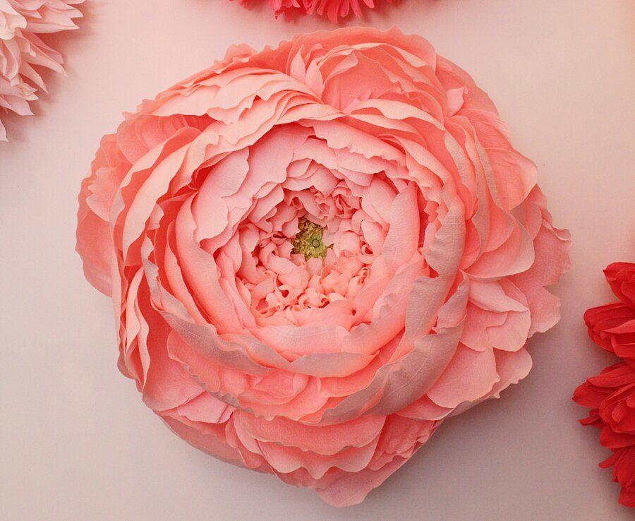 fiori-enormi-carta-crespa-tiffanie-turner-06