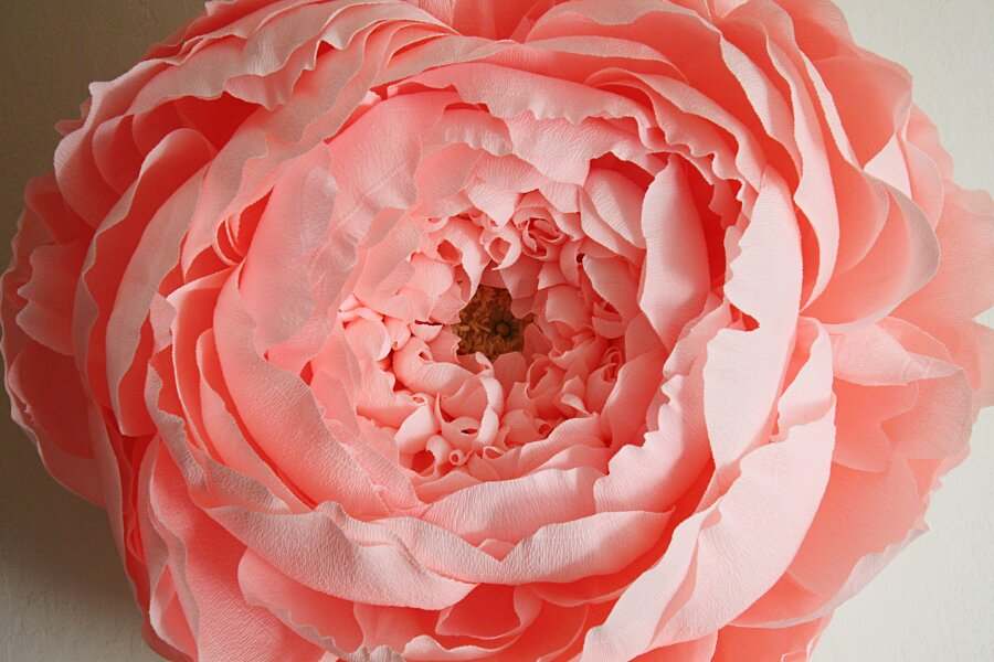 fiori-enormi-carta-crespa-tiffanie-turner-07