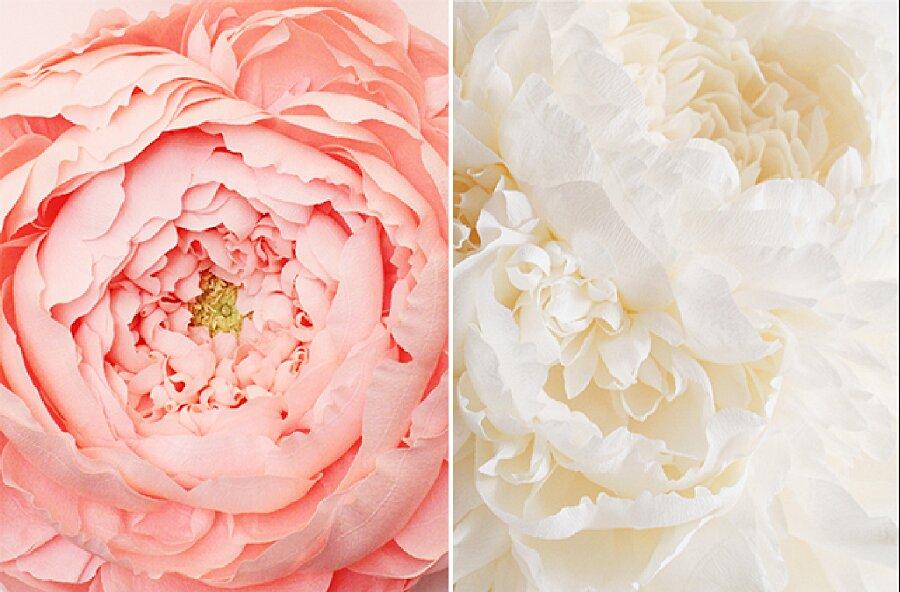 fiori-enormi-carta-crespa-tiffanie-turner-13