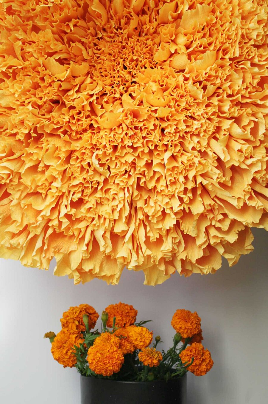 fiori-enormi-carta-crespa-tiffanie-turner-14