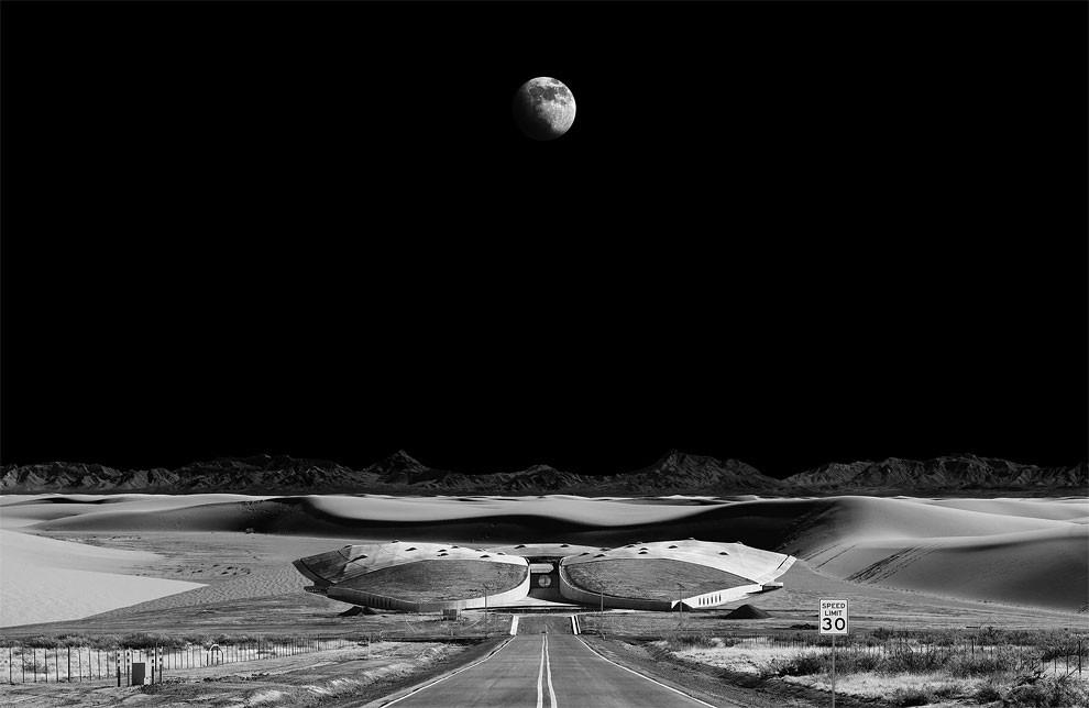 foto-addestramento-primo-artista-nello-spazio-michael-najjar-04